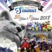 Festival des Géants et des Masques